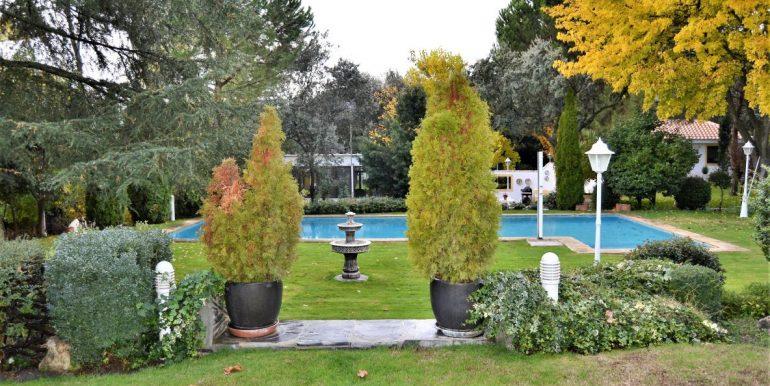 jardin 6 (2)