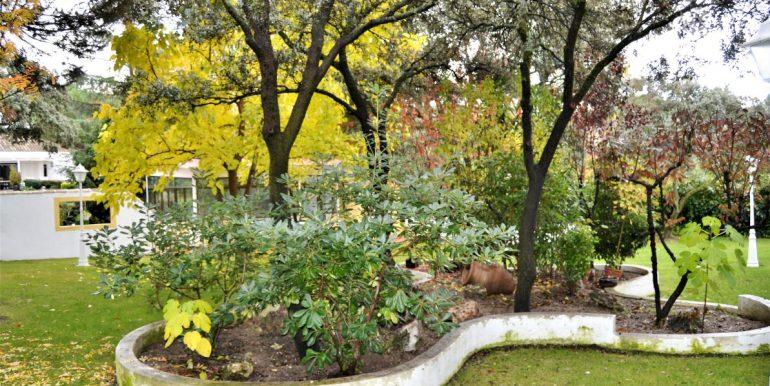 jardin2 (2)